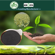Carbon base organic fertilizer in Garden Soil