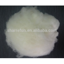 Stock service White Dehaired Cashmere Fiber and Carded Cashmere