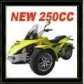 250CC 3 WHEEL ATV CAN AM (MC-389)