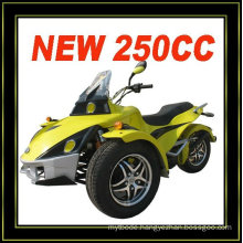 250CC 3 WHEEL ATV CAN AM(MC-389)