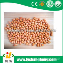 2013 best quality baisha peanut kernel with lowest price
