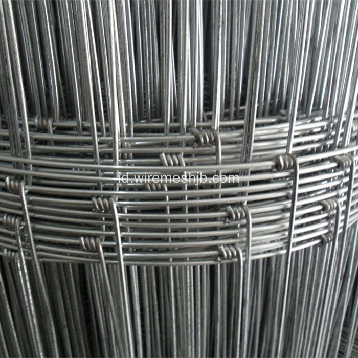 Hot-dip Galvanized Field Fence Netting