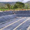 Precio del revestimiento con textura de geomembrana HDPE LLDPE Filipinas
