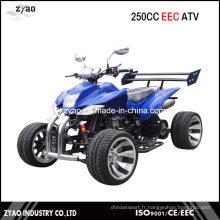 250cc Water Cooled EEC Racing Quad avec 12 pouces en alliage Semi-Automatique CVT