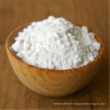 Bicarbonate de soude de catégorie comestible de bicarbonate de soude