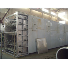 Hotsale Mesh Belt Dryer for Vegetables (DW)