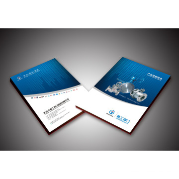 Geschäftsbroschüre / Druckbroschüren / Broschüre