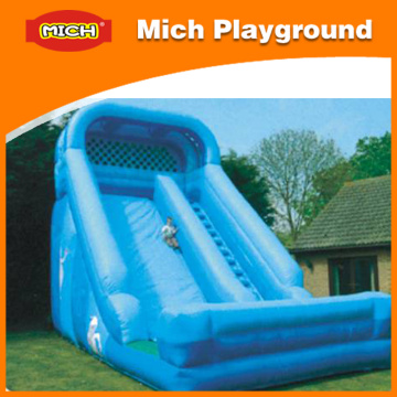 Bouncy Castles Jumping Outdoor Playground Inflatables (1220J)