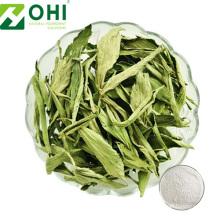 Süßes Blatt Stevia Extrakt Steviosid
