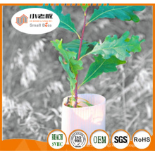 Plant Tree Guards/ Tree Protectors