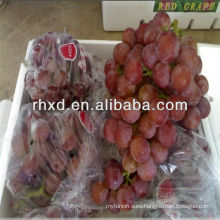 Fresh red grapes with factory best price export