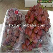 Свежий красный виноград с фабрики самое лучшее экспортная цена