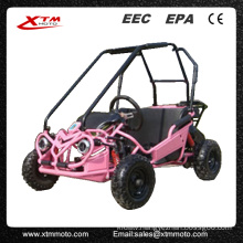 Kids Safe Gas Mini 50cc Buggy 49cc Mini Go Kart