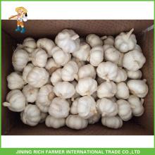 Vente en gros Chinois Fresh Pure White & Snow White & White White White & Red Garlic 4.5CM, 5.0CM, 5.5CM, 6.0CM, Mesh Bag En 10Kg Carton