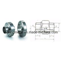 Aço inoxidável Threaded União (JB / ZQ4416)