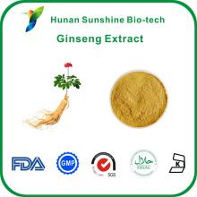 Ginsengwurzel 30% Ginsenoside, Polysaccharid Ginseng-Extrakt