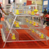Taiyu design day old chicks cage for sale
