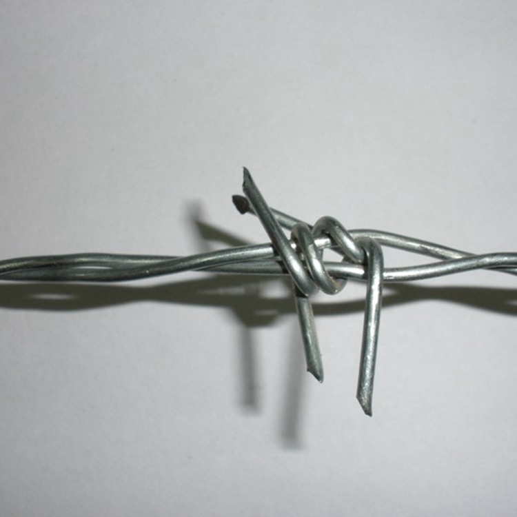 Barbed Wire (