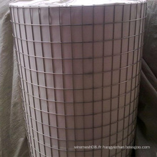 Treillis métallique soudé en acier inoxydable