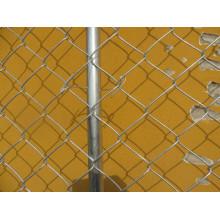 Chaînes à chien à chaîne galvanisée à chaud et chaud, chien à canon galvanisé à chaud dans l'usine Anping de haute qualité