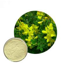 Natural Bulk Pure Sophora Japonica Extract Genistein Powder