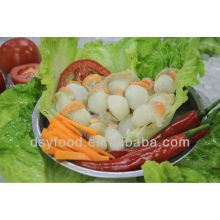 frozen high quality scallop meat
