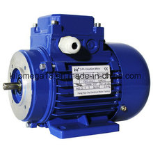 Industry Electrical Motor with Asynchronous Type