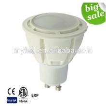 OEM / ODM fábrica de fornecimento Mini LED teto luzes Spot 5W para carro