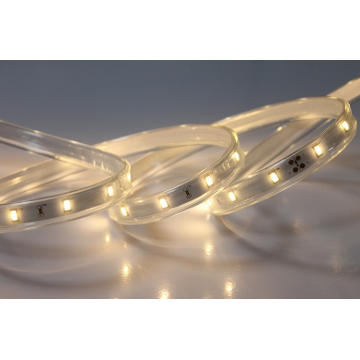 Kerst 5630 led strip
