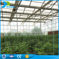 OEM greenhouse polycarbonate sheet, 4mm-36mm available, any color could be custom made