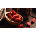 Organische chinesische Goji-Beere, chinesische Wolfberry, traditionelle chinesische Medizin