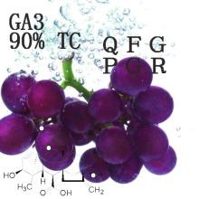 Ga 3 Regulador de crecimiento de la planta de ácido Gibberellic 90% Tc