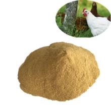 Poudre de levure 60% additifs d'alimentation de catégorie d'alimentation