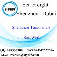 Shenzhen Port LCL Ενοποίηση στο Ντουμπάι