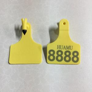 middle Feedlot Tags  for calf
