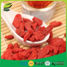 the best goji berry in China zhongning goji berry