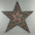 colorful sequin embroidery star patch