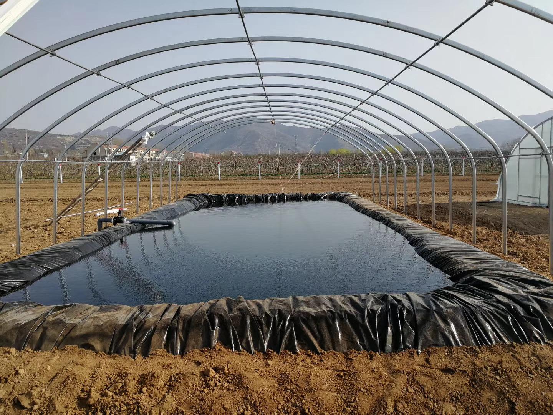 fish pond liner