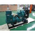 Generador diesel trifásico de la CA 40kw con el toldo silencioso
