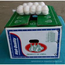 2016 Chinesischer frischer normaler weißer Knoblauch 5.5-6cm