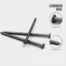 Usine d'approvisionnement en ongles de fer commune 2 pouces Construction ongles communs