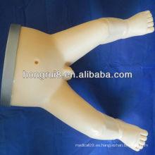 Inyección intraósea de ISO y simulador de perforación de médula ósea infantil