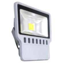 30W COB LED Proyecto de luz con 2 años de garantía
