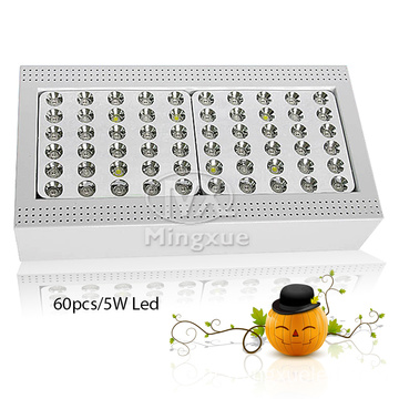 Low ruidoso Fans 300w LED Grow Light