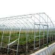 Large 10m Tunnel Plastic Film Greenhouse