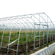 Special Design for for Offer Pc Board Greenhouse, Pc Sheet Covering  Greenhouse, Greenhouse  Pc Board from China Supplier Large 10m Tunnel Plastic Film Greenhouse export to Central African Republic Exporter