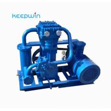 LPG liquid gas booster pump ZW-0.95/10-16 LNG LPG gas Compressor