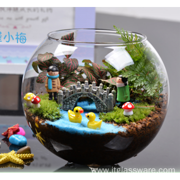China Different Types Clear Home Glass Vase Terrarium Manufacturers