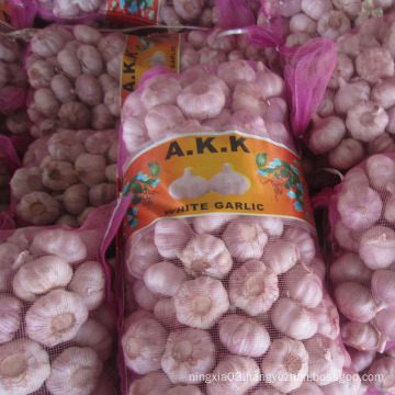 China Garlic 10kg mesh bag fresh garlic