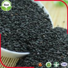 Meilleur prix graines de sésame noir pour l'huile